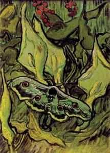 Van Gogh - Farfalla testa di morto su un fiore